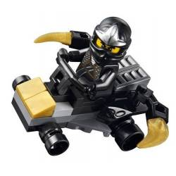 30087 Car Ninja