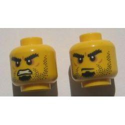 Голова cpb0979  с двойным лицом