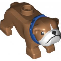 Bulldog with Black Eyes