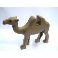 Dark Tan Camel