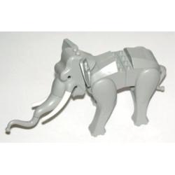 Elephant with White Tusks
